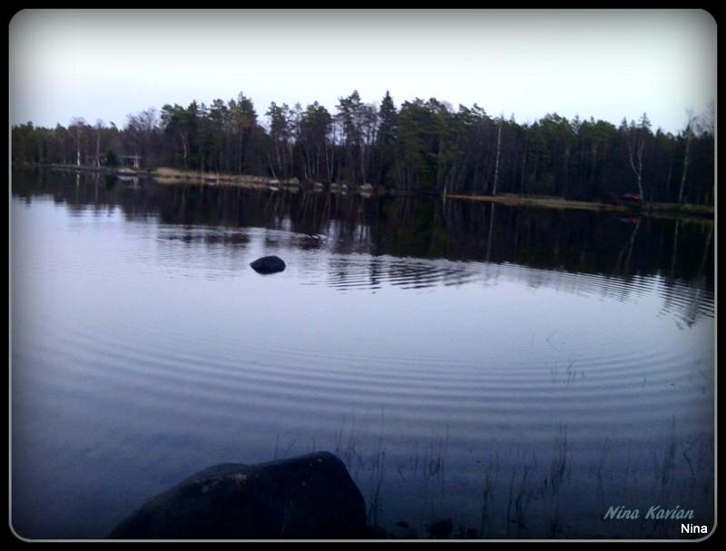 Den här tycker jag blev vacker!  Tagen sommaren 2013 i stugan, på landet. Där finns en sjö som är blank och långgrund, bra att bada i. Det är också mycket vass och stenar längs strandkanten.