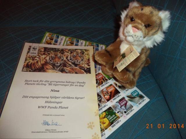 ... Och kolla vad det innehöll! En jättesöt tigermjukis från WWF, klistermärken och ett fint diplom! Samt kompis-biljetter så att fler kan bli medlemmar!