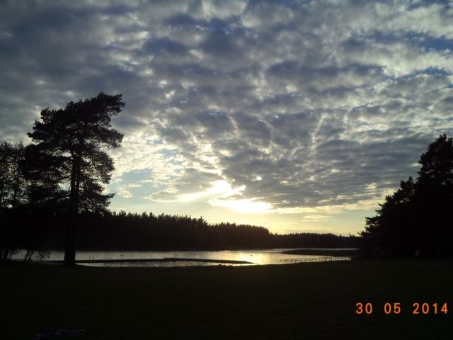 Sjön, solnedgången, den skuggade skogen. Landskapet.