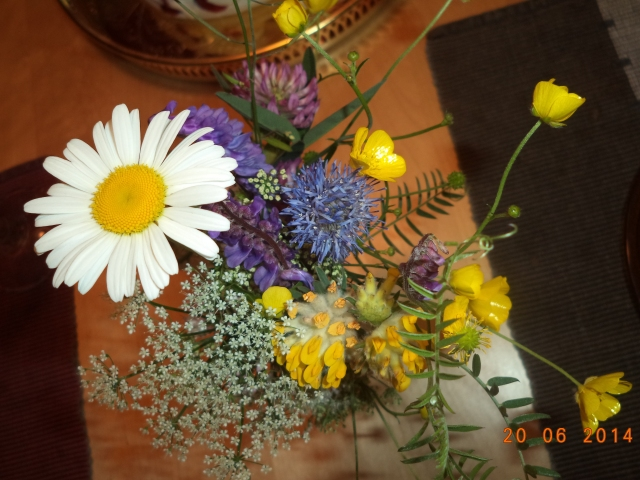 Den här blombuketten, med sju sorters blommor, plockade jag idag för att se om de gamla myterna om att man drömmer om sin framtida livspartner om man lägger blommorna under kudden under midsommarnatten stämmer.  Jag ska testa, hoppas det fungerar! :D