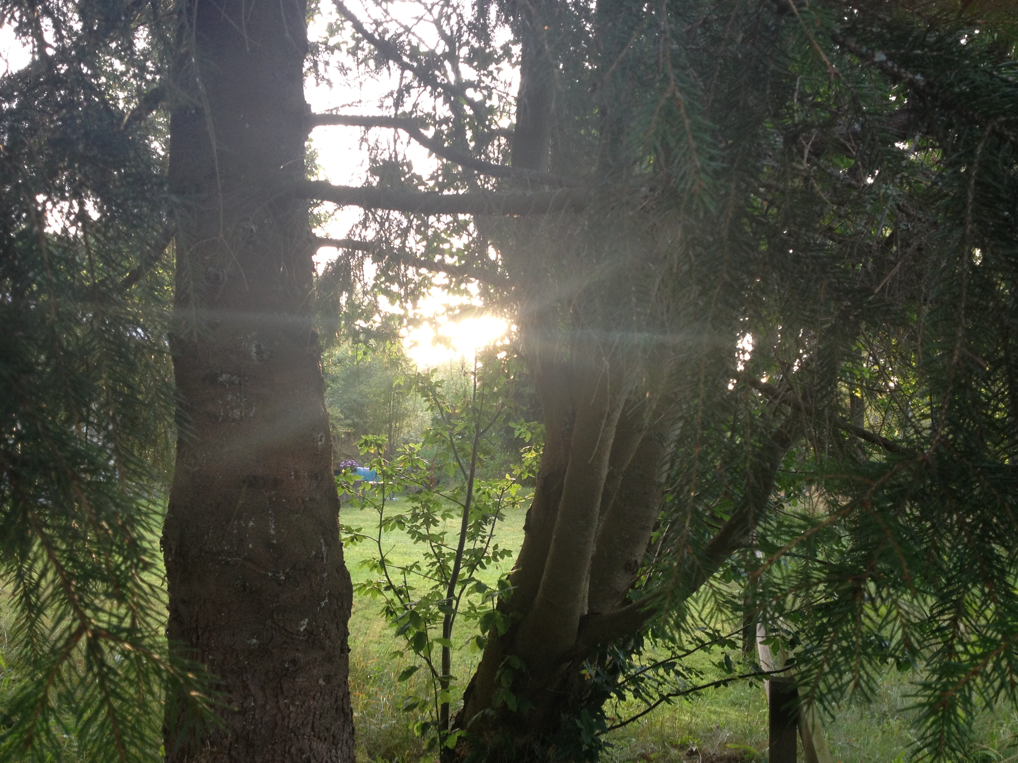 ... Man måste sträcka sig långt och fånga de små solglimtarna i vardagen!