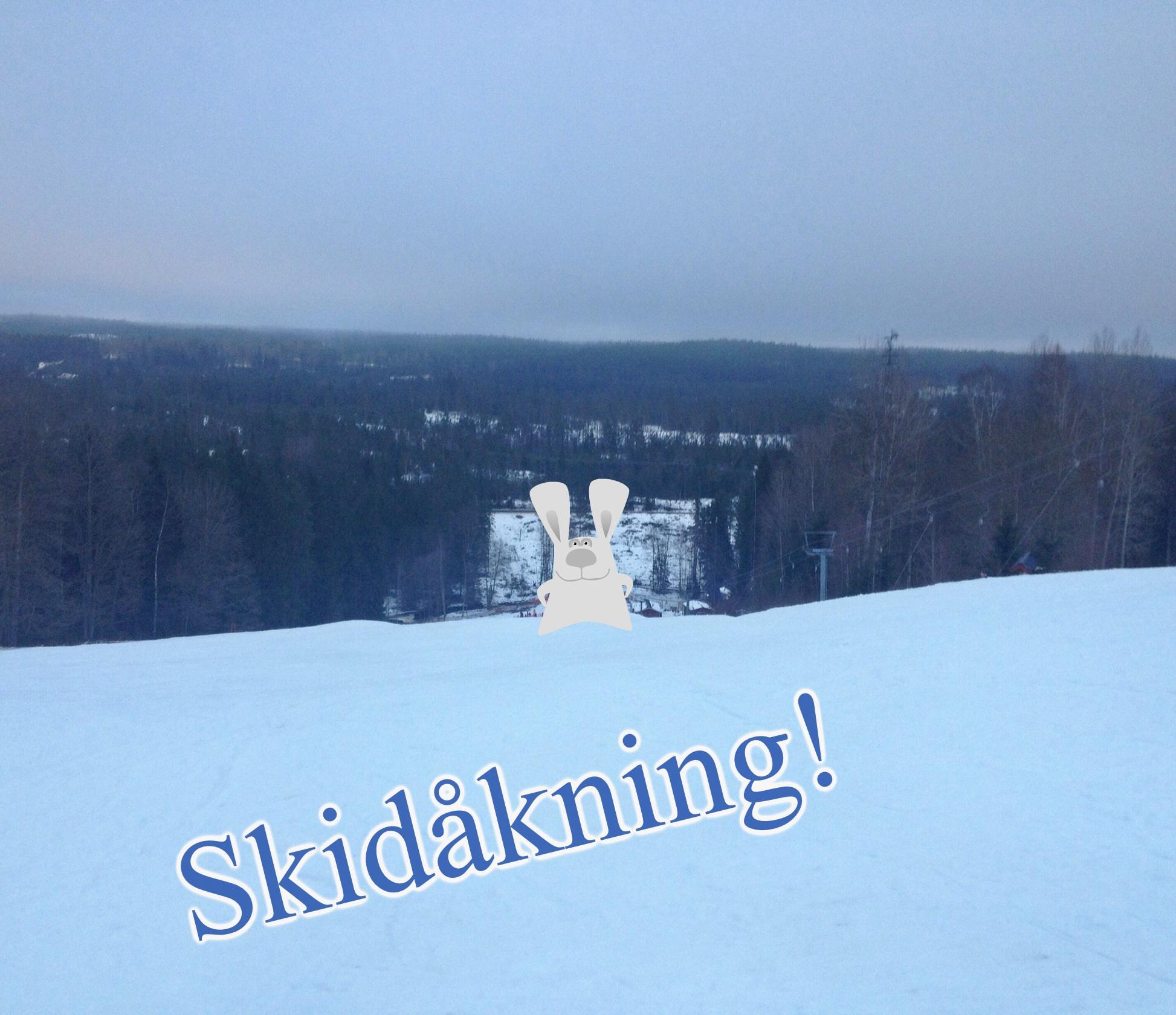 """Den här bilden är tagen från toppen av slalombacken, och jag hoppas ni ser hur brant den är! Längst ner står människor i kö till liften, och de syns knappt på fotot - men jag satte dit ett """"klistermärke"""" på en hare för säkerhets skull. :)"""